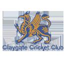 Claygate CC Seniors