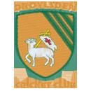 Droylsden CC Juniors