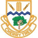 Cherry Tree CC Juniors