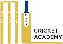 Mark Lawson Cricket Academy Seniors