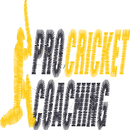 Pro Cricket Coaching Seniors