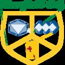 Moorfield CC Juniors