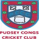 Pudsey Congs CC Seniors
