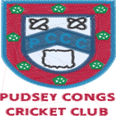 Pudsey Congs CC Juniors