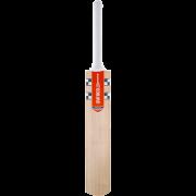 2020 Gray Nicolls Powerspot Cricket Bat