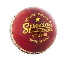 2020 Readers School Special Junior Cricket Ball