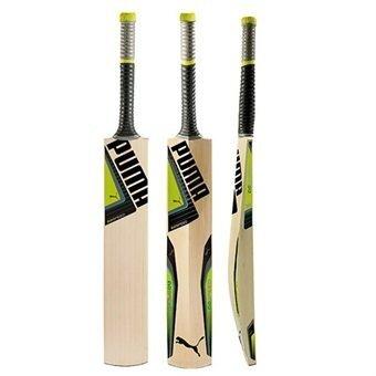 f8eb4616a2bd 2016 Puma evoSpeed 4 Cricket Bat
