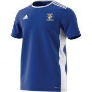 Frickley Colliery Welfare CC Adidas Blue Training Jersey