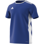 Chappel & Wakes Colne CC Adidas Blue Junior Training Jersey