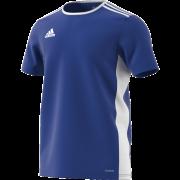 Tenbury United FC Adidas Blue Junior Training Jersey