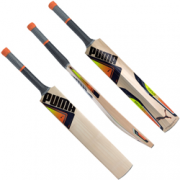2017 Puma evoSpeed 3 Cricket Bat