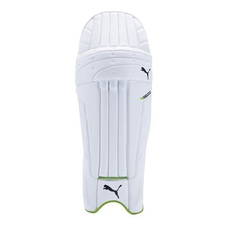 2017 Puma evoPower 1 Batting Pads
