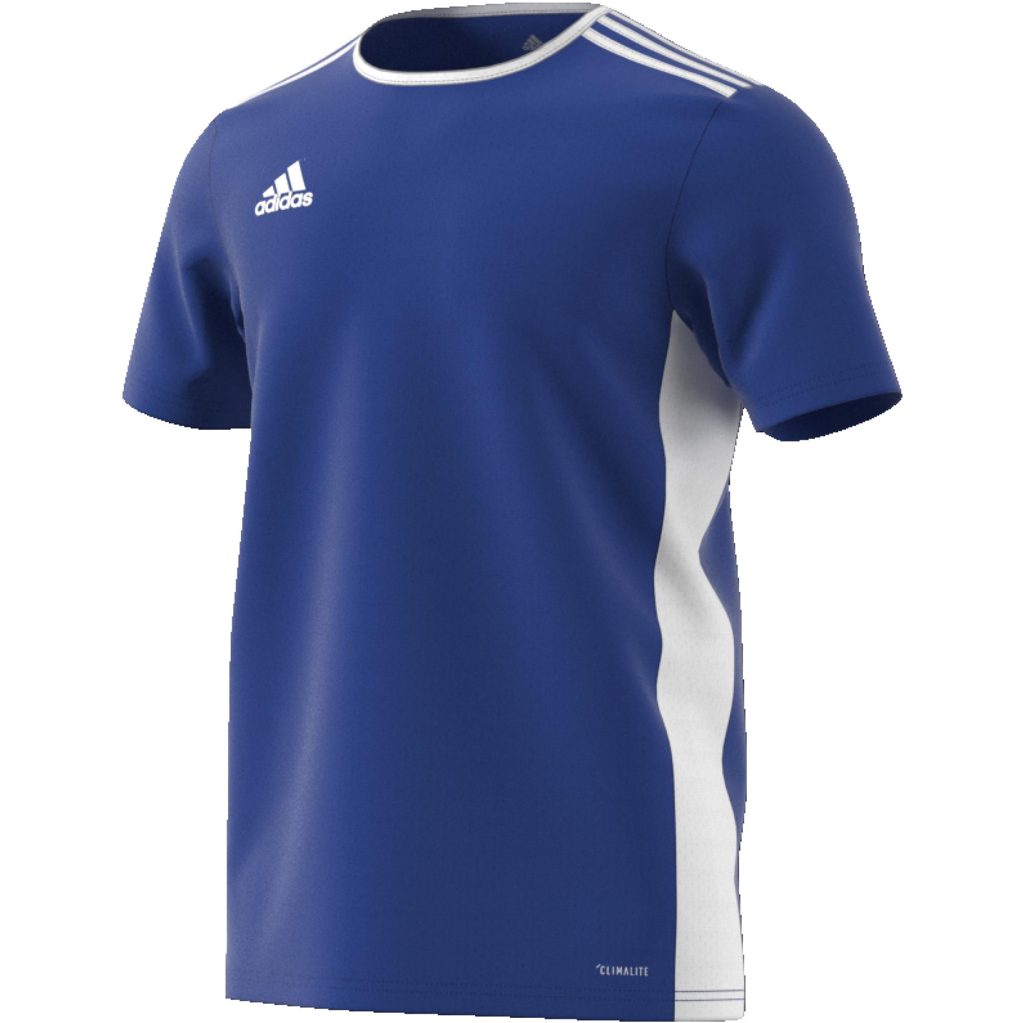 Lostock CC Adidas Blue Junior Training Jersey