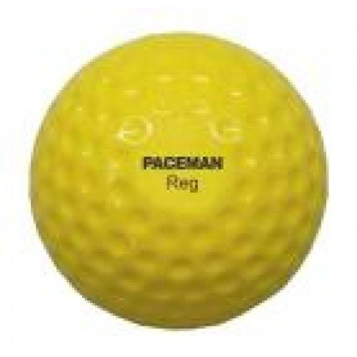 Paceman Pro Bowling Machine Balls Hard Balls
