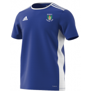 Didsbury CC Blue Training Jersey