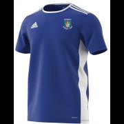 Didsbury CC Blue Junior Training Jersey