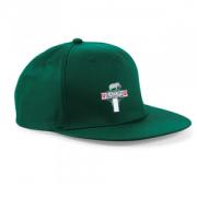 Eaton CC Green Snapback Hat