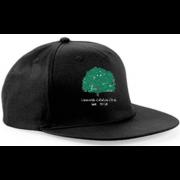 Llanarth CC Black Snapback Hat