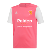 Abberton and District CC Adidas Estro 19 Pink Jersey