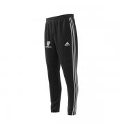 Armagh CC Adidas Black Training Pants