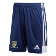 Great Bromley & District CC Adidas Navy Training Shorts