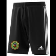 Springfield CC Adidas Black Training Shorts