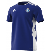 Fulham CC Blue Training Jersey