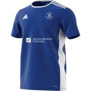 Hayes School Adidas Blue Training Jersey
