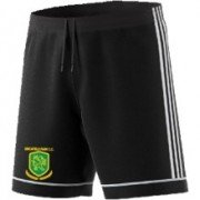 Birchfield Park CC Adidas Black Training Shorts