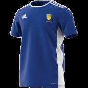 Allenburys & County Hall CC Adidas Blue Training Jersey