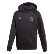 Cardiff CC Adidas Black Junior Fleece Hoody