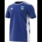Darwen CC Towers Blue Junior Training Jersey