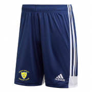Great Oakley CC Adidas Navy Training Shorts