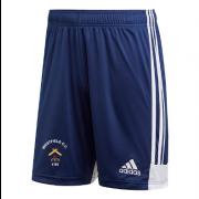 Westfield CC Adidas Navy Junior Training Shorts