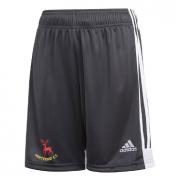 Hertford CC Adidas Black Junior Training Shorts