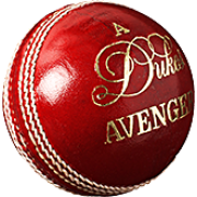 Dukes Avenger 'A' Cricket Ball