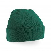 Whimple CC Green Beanie