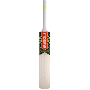 2017 Gray Nicolls Velocity XP 1 Academy Cricket Bat