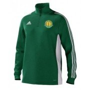 Checkley CC Adidas Green Junior Training Top