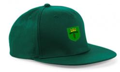Bronze CC Green Snapback Hat