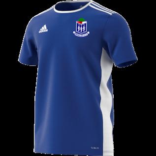Whalley CC Adidas Blue Training Jersey