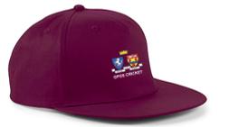 Oakwood Park Grammar School CC Maroon Snapback Hat