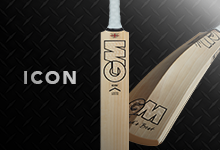 Gunn & Moore Icon Cricket Bats